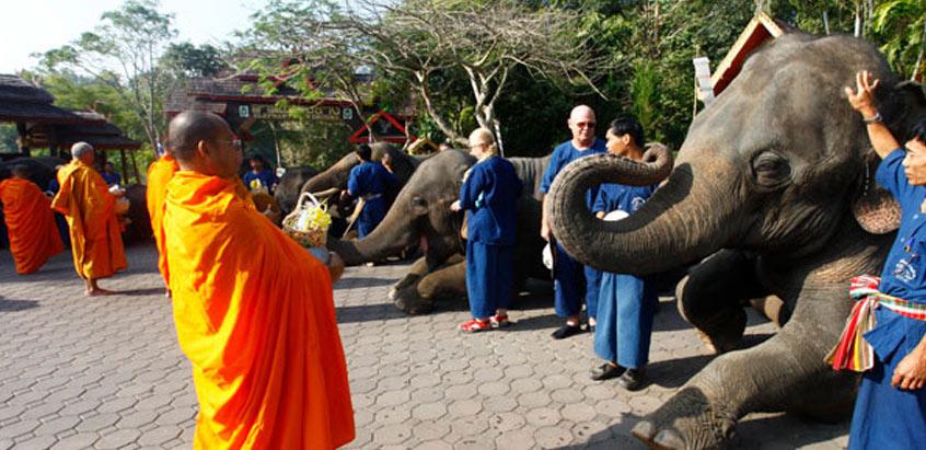 Khao Tha Phet Wildlife