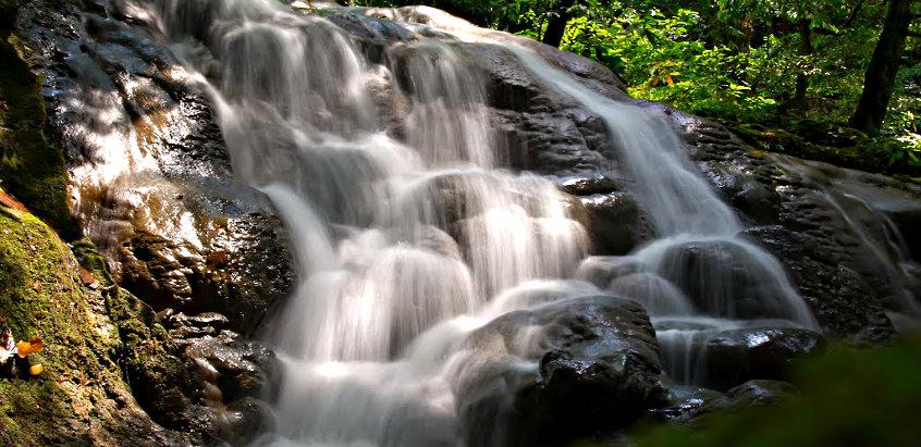 attraction-sa-nang-manora-forest-park