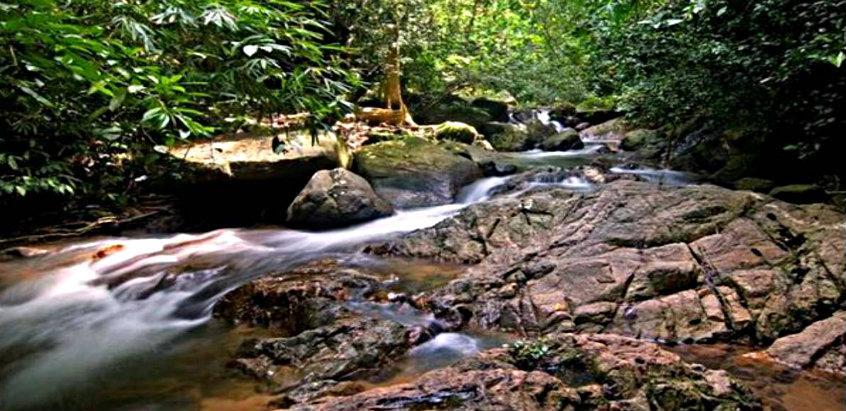 khao-tha-wildlife-surat-thani