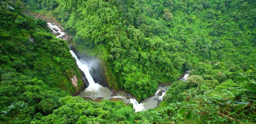 khao-yai-national-park