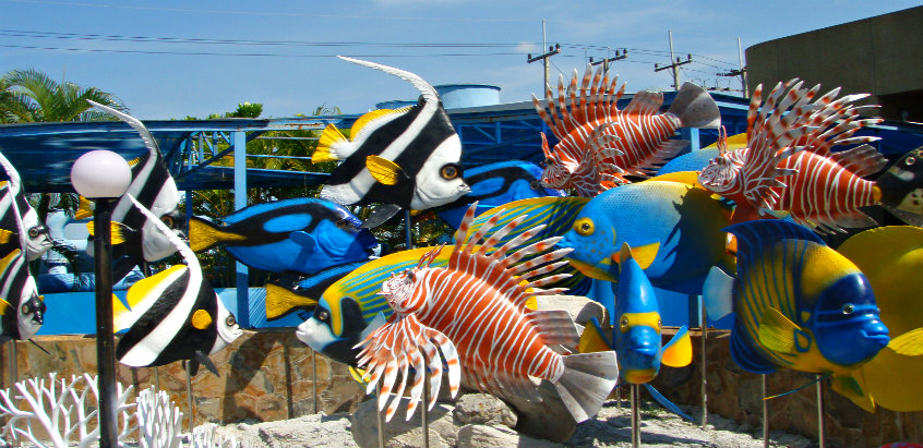rayong-aquarium