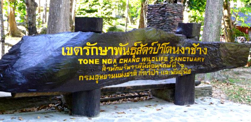 ton-nga-chang-wildlife
